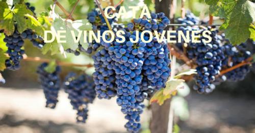 XXII Cata de vinos, con recital de poemas en torno al vino y al amor.
